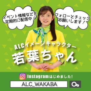 若葉ちゃんインスタ宣伝用画像(@alc_wakaba)